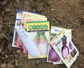 有機野菜多品目の種まき始まりました